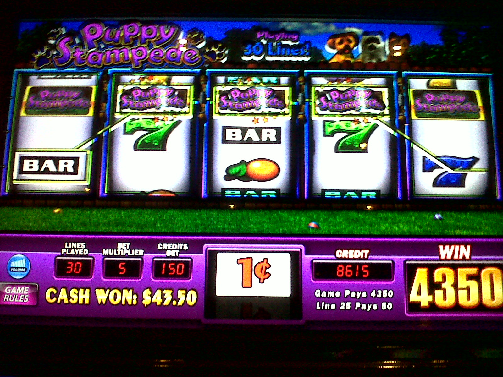 Puppy Stampede Slot Machine